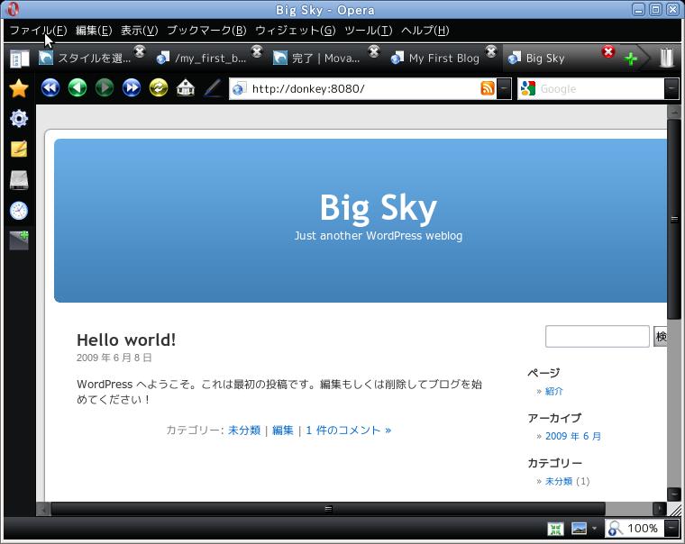WordPress working