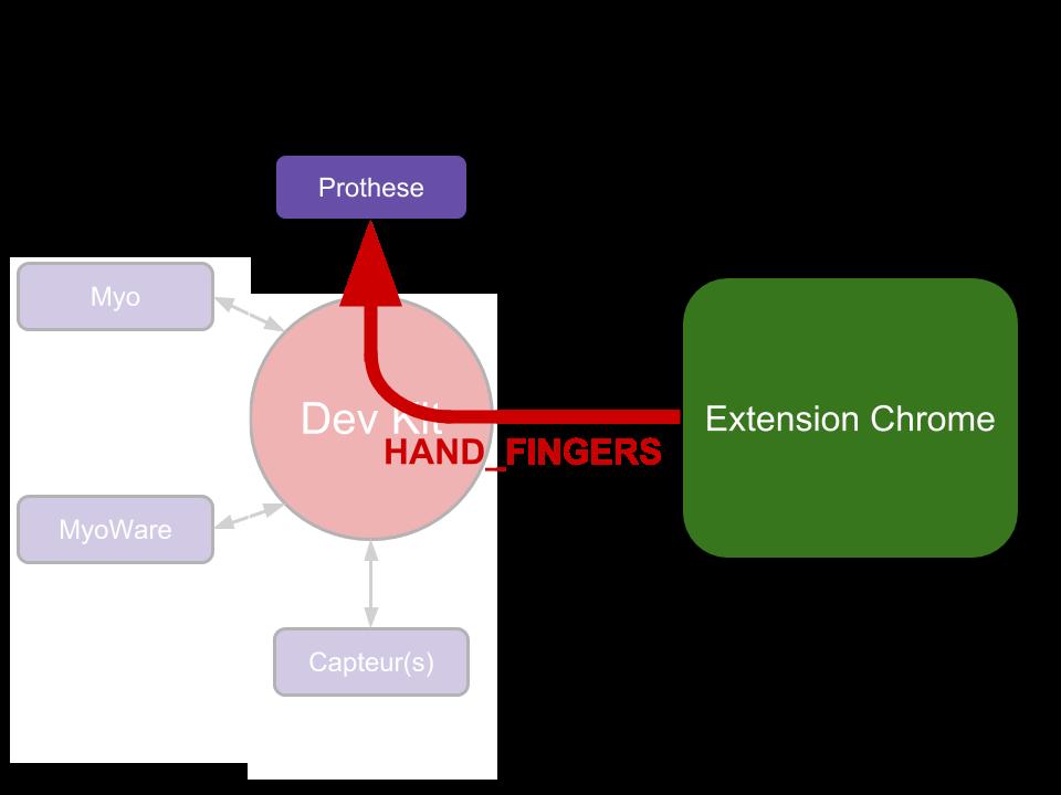 HAND_FINGERS path
