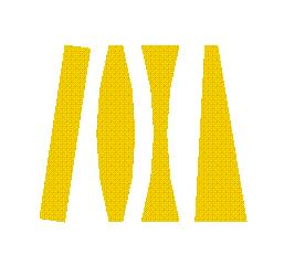 Skewray Logo