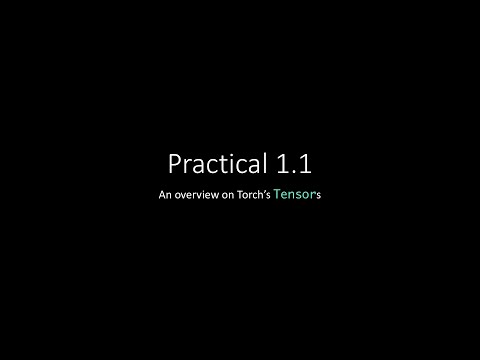 Practical 1.1 - Torch