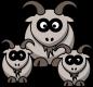 testing goats