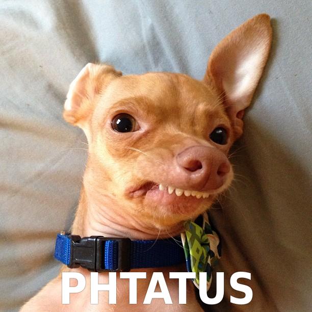 Phtatus