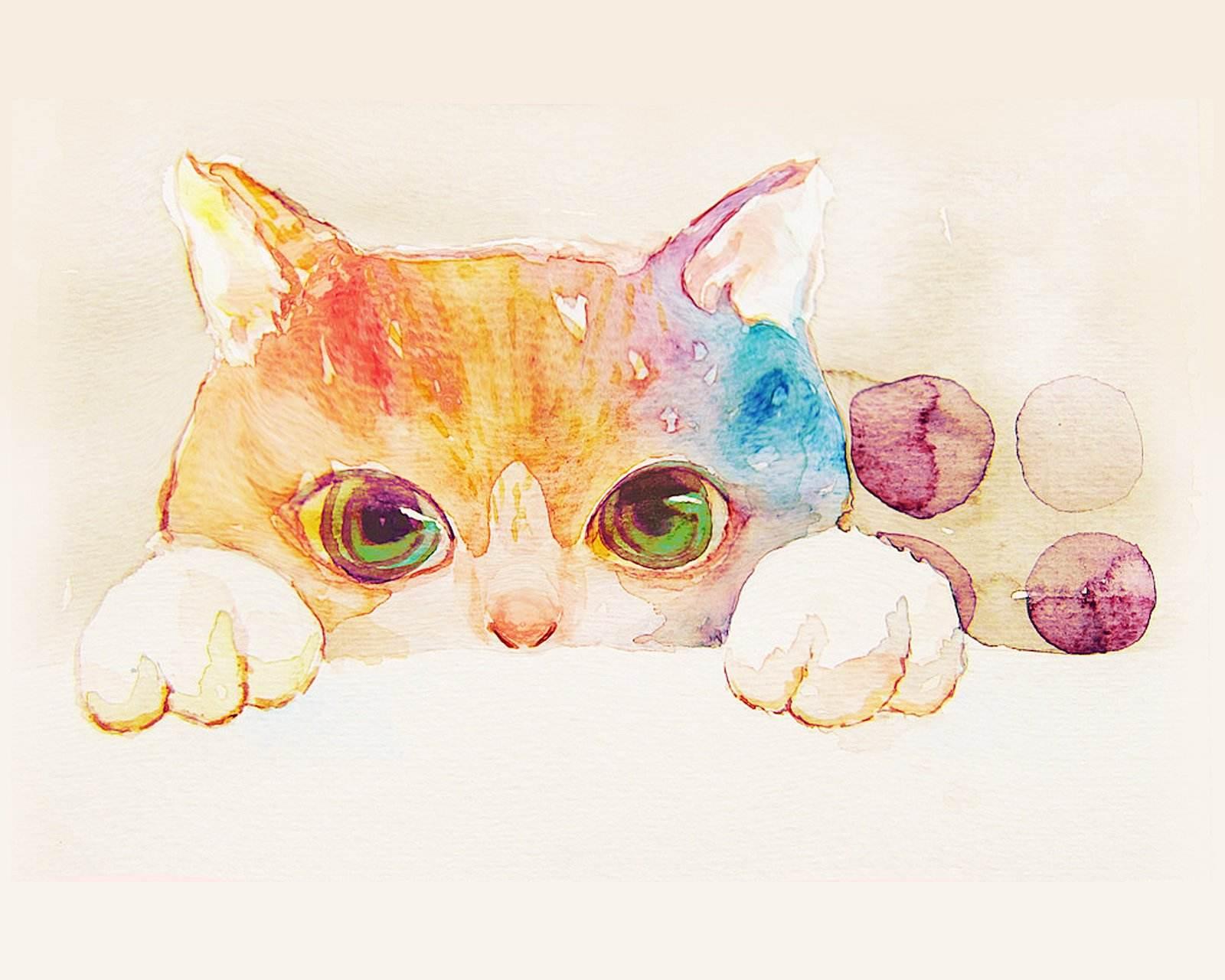 cat-cartoons.jpeg
