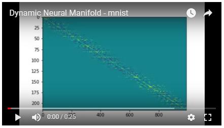 Dynamic Neural Manifold - mnist