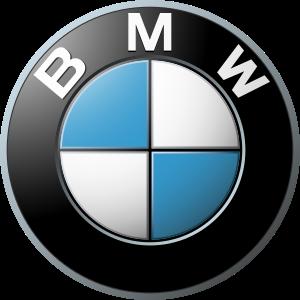 BMW CarIT