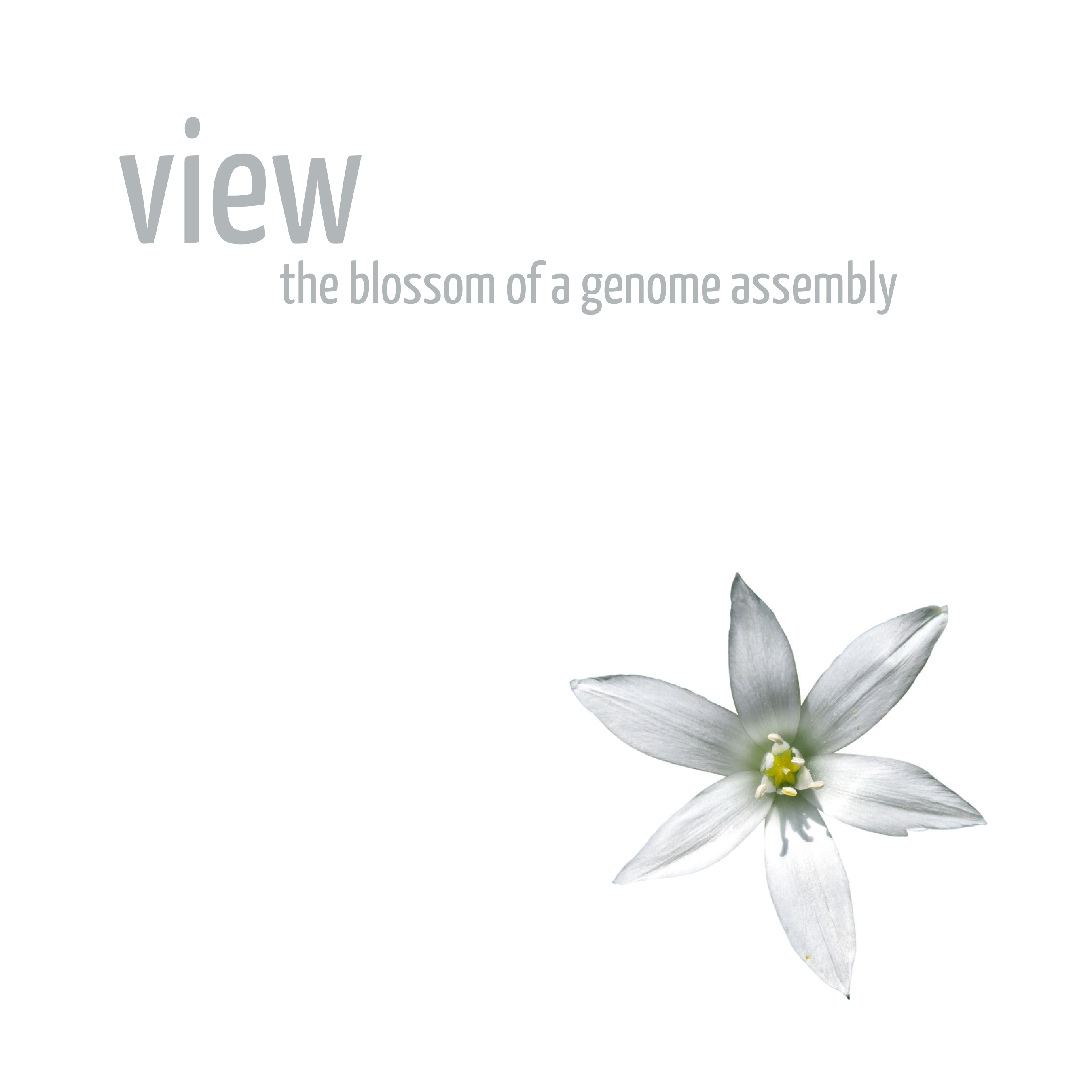 View: the blossom of a genome assembly