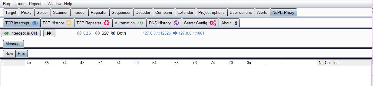 GitHub - summitt/Burp-Non-HTTP-Extension: Non-HTTP Protocol