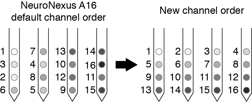 Example channel reordering for NeuroNexus A4x4 probe