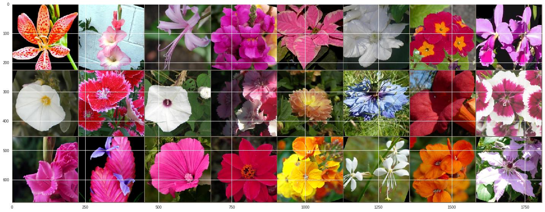 GitHub - pswaldia/Flower_identification: Web Application