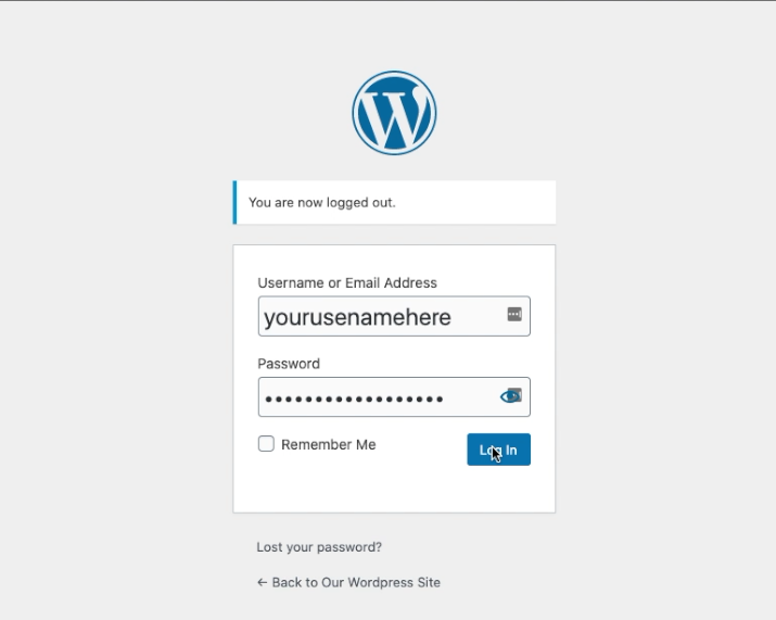 Wordpress Initial login picture