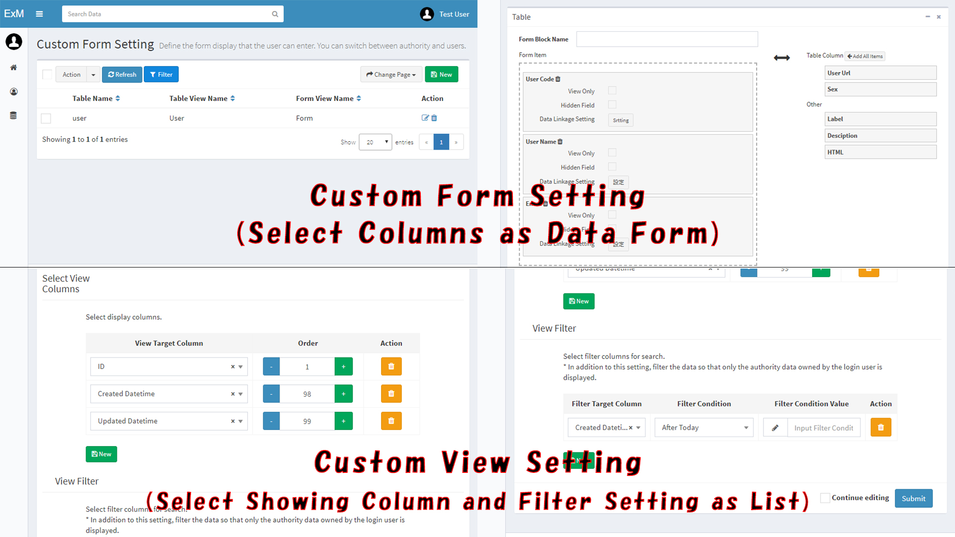 Custom Form and view