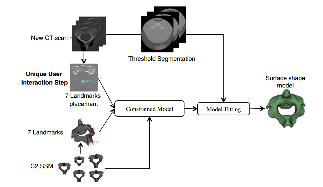 GitHub - Michael-M-Judd/spinal-segmentation-analysis: Python