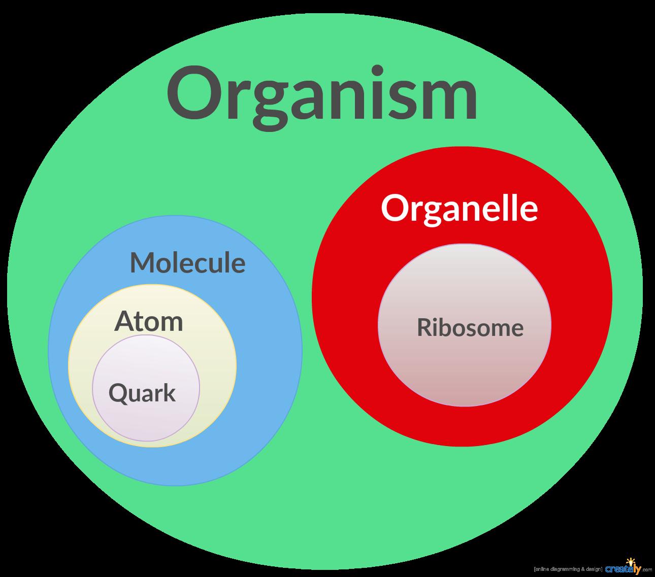 Github suissaatomicfuckingdesign seed arquitetura para a molecule a definio da estrutura dos campos atoms os quais so validados pelos quarks ccuart Images