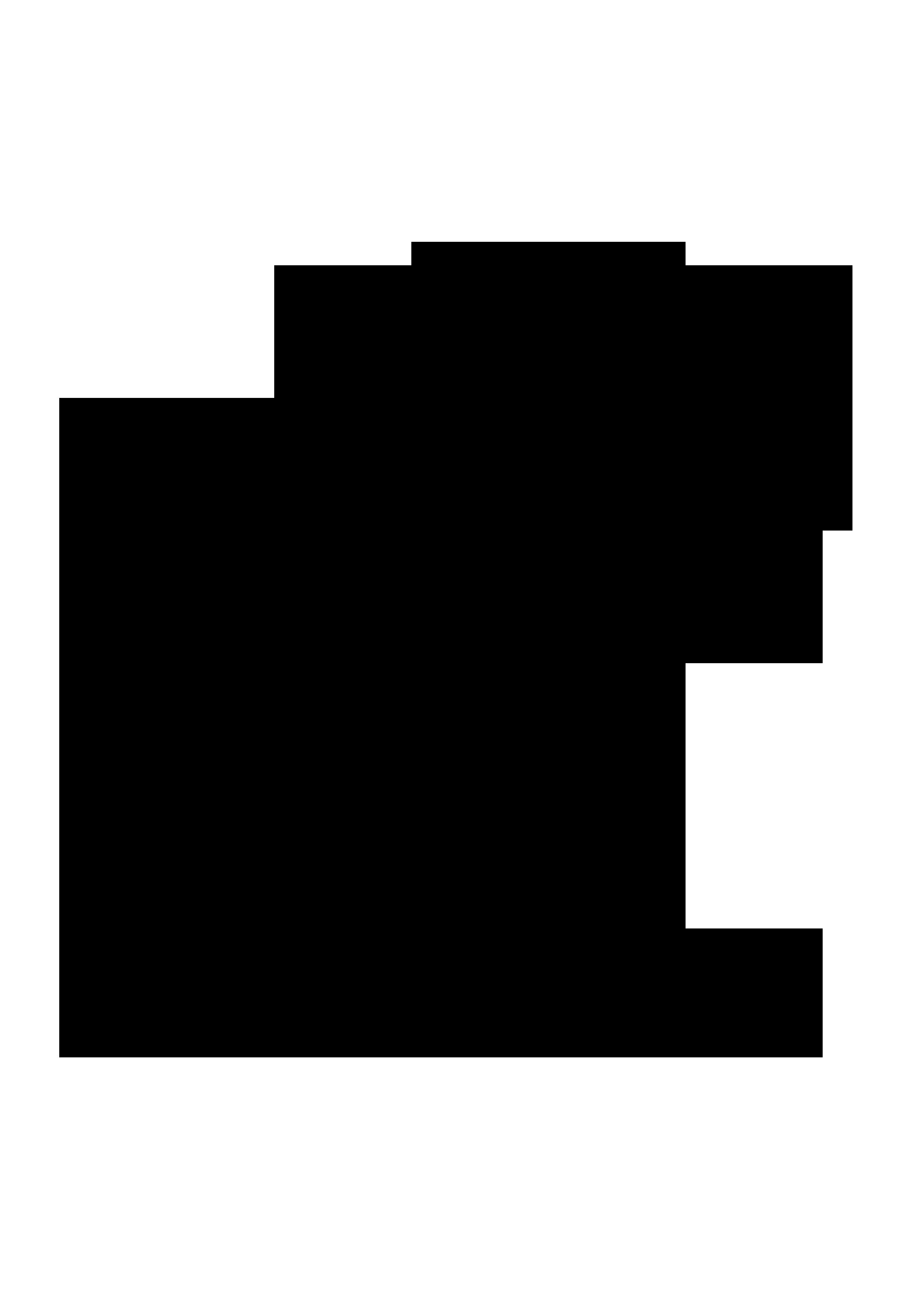 torchbear logo