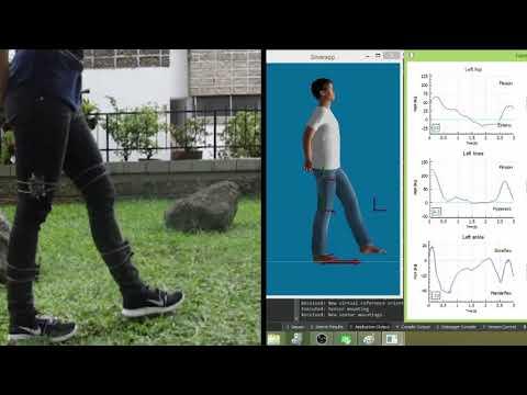 GitHub - juanmalunatic/silvereye: IMU based motion capture