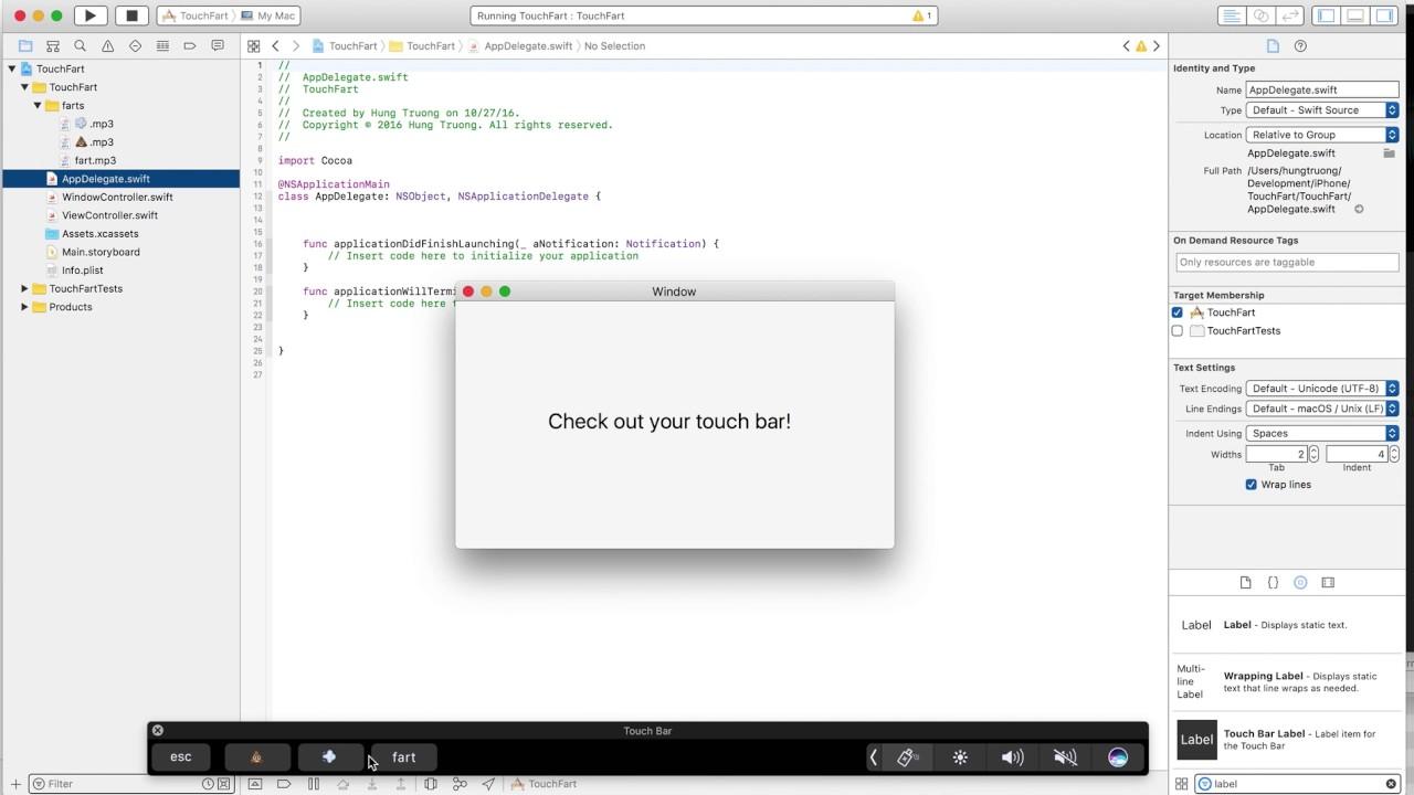 TouchFart Demo Video