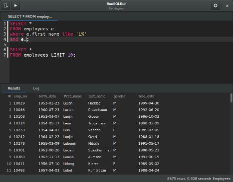Screenshot of RunSQLRun