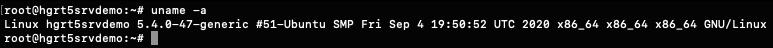 ubuntu 20.04 uname output