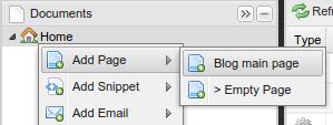Blog document type