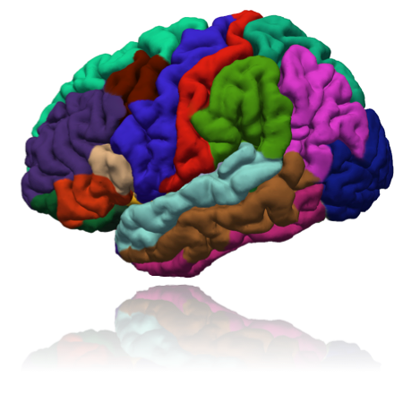 GitHub - fepegar/awesome-medical-imaging: Awesome list of