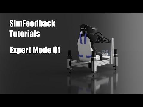 SimFeedback Tutorial 04