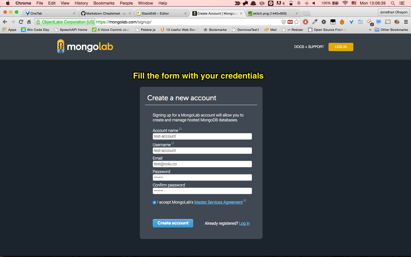 Mongolab signup form