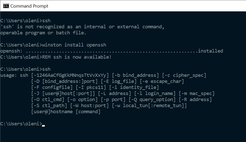 Winston example install