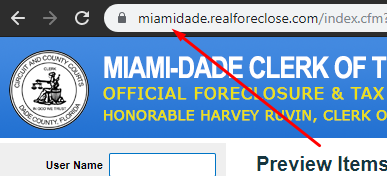 miami dade regional domain