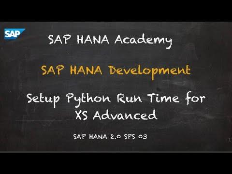 Setup Python Run Time for XSA