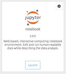launch jupyter notebook