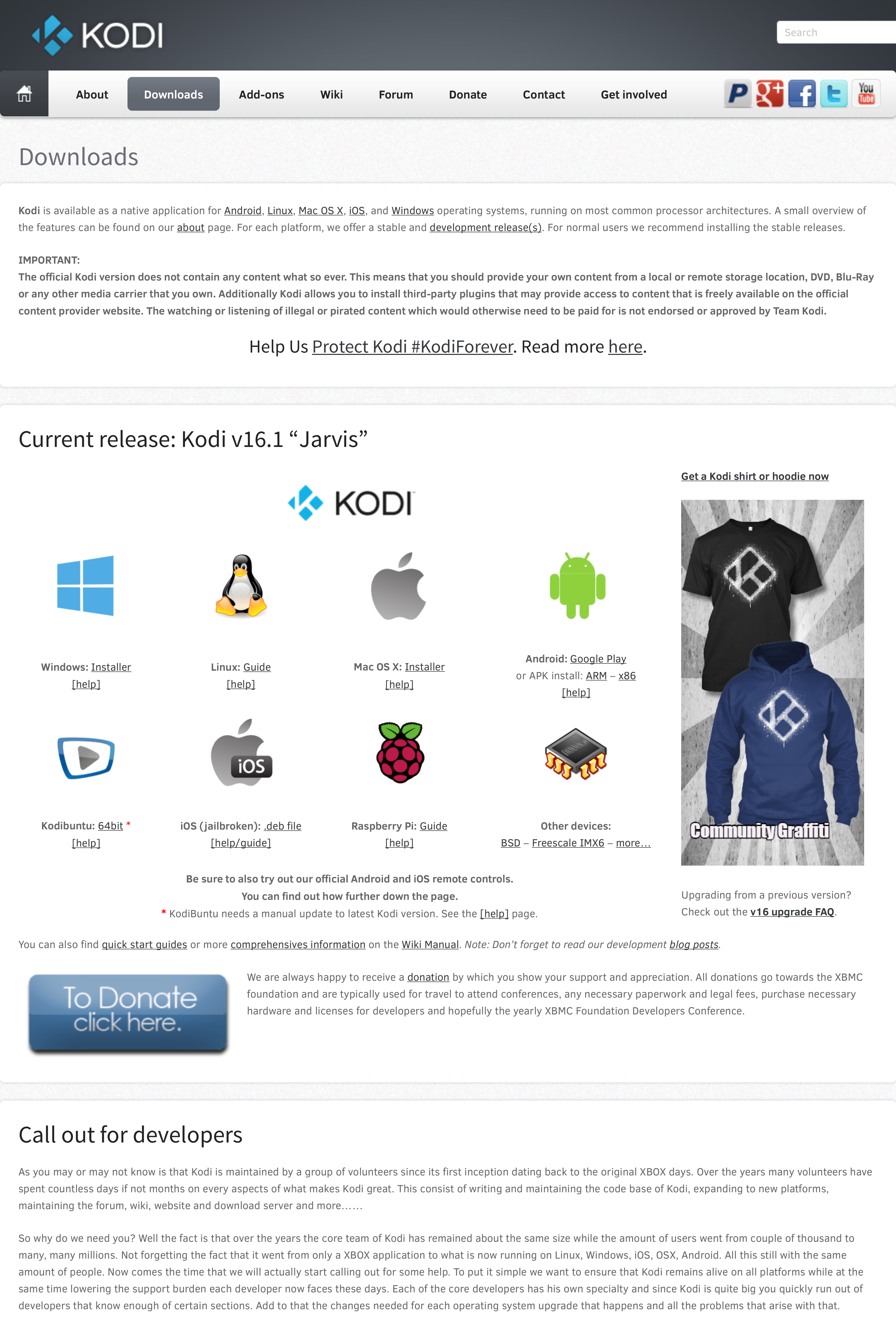 Screenshot of the site issue