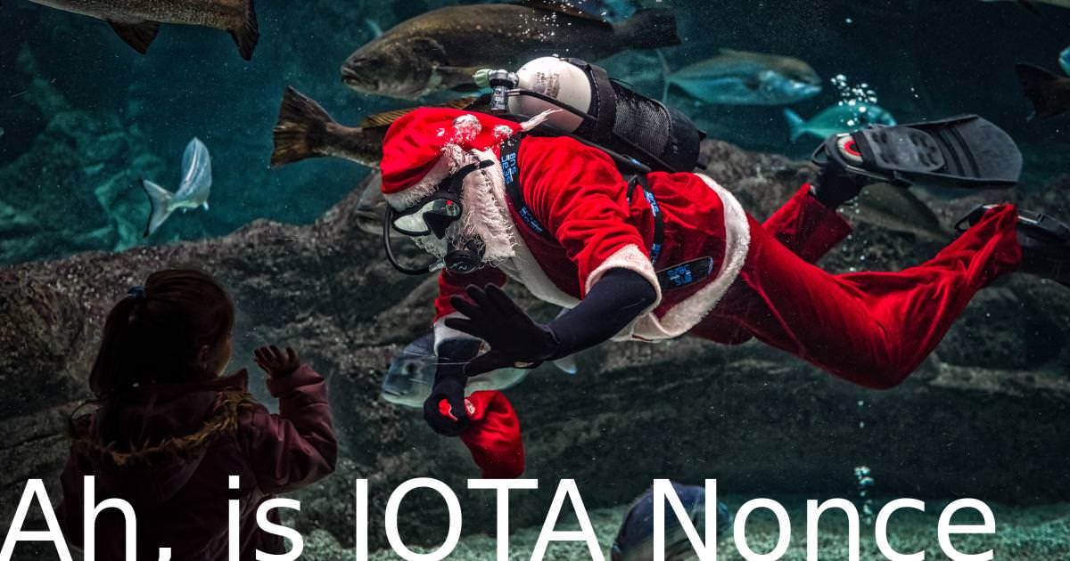 Photo by GEORGE DESIPRIS from Pexels https://www.pexels.com/photo/man-in-santa-claus-costume-with-diving-gear-inside-aquarium-731141/