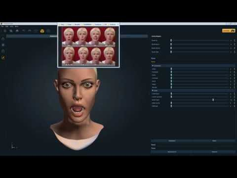 Face Expression Setup