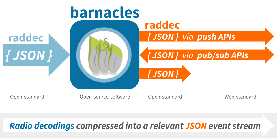 barnacles overview