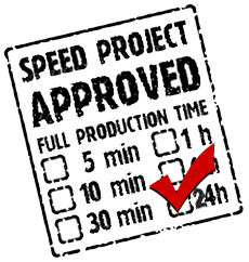 24 hr speed project