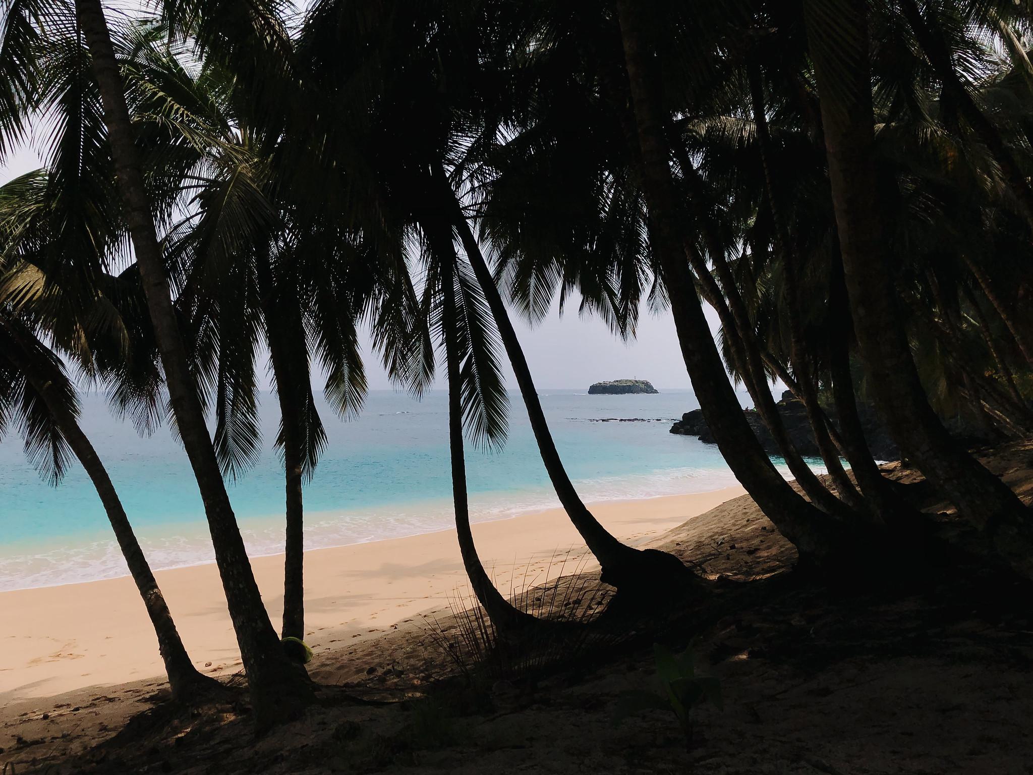 praiaBoi