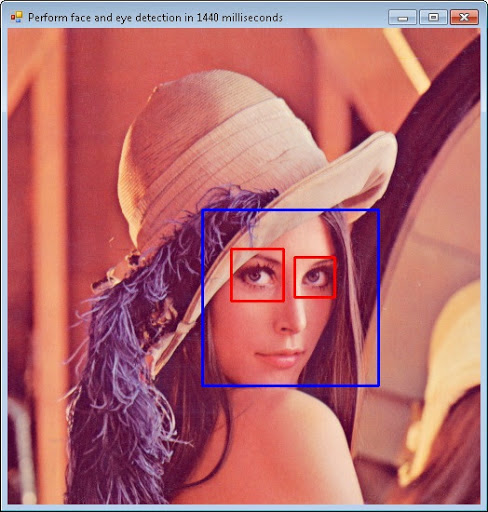 Face detection sample