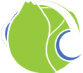 logo_cabbage_black_no_text