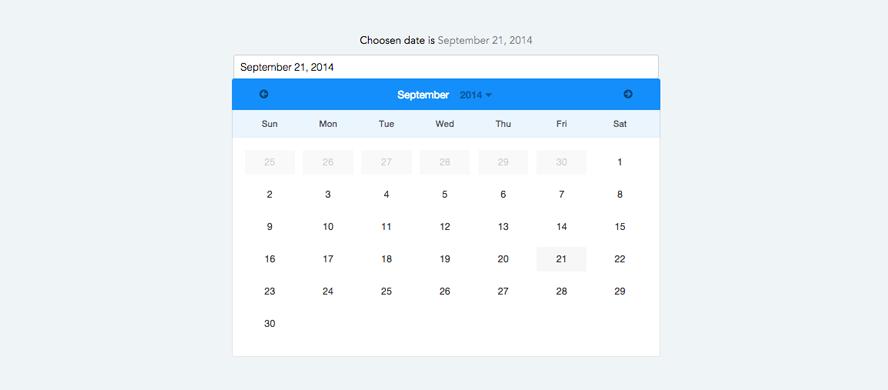 Angular datepicker calendar