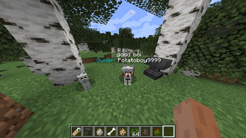Pet Owner - Mods - Minecraft - CurseForge