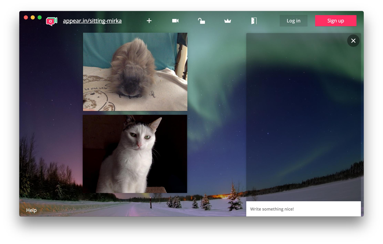 appear.in screenshot