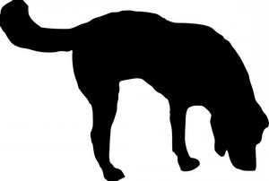 image of dog sniffing