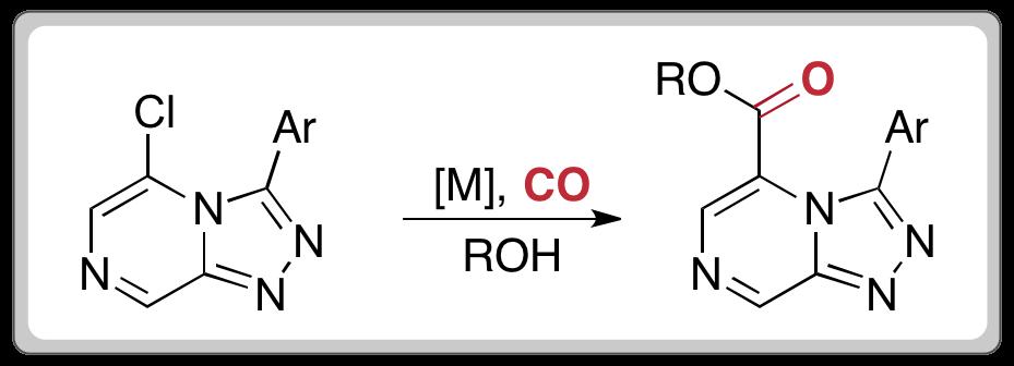 carbonylation2