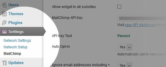 Plugin options on multisite installs of WordPress.