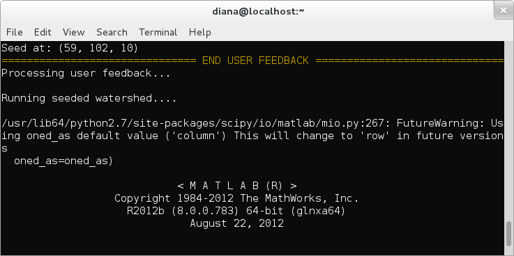Matlab system call progress information is displayed in the terminal