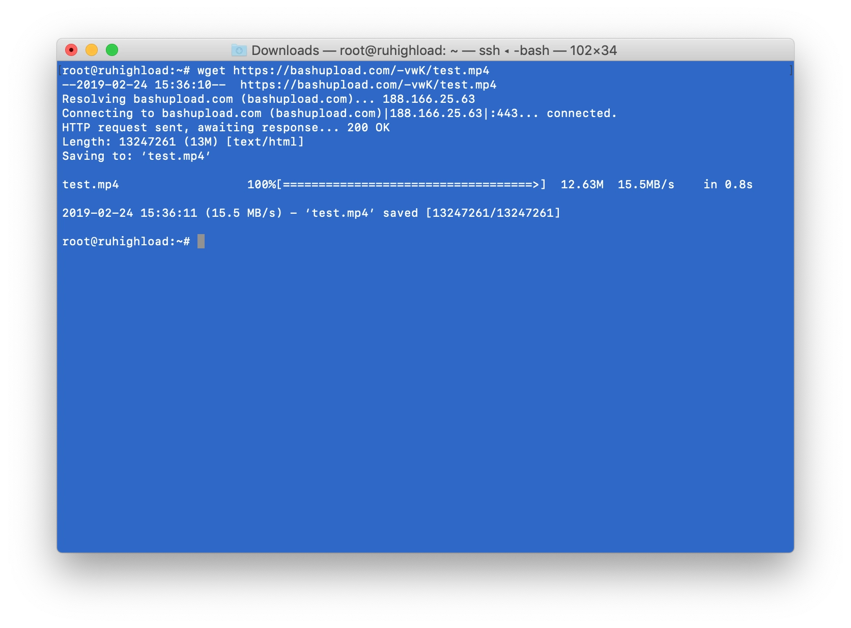 Image of downloading file in a command line