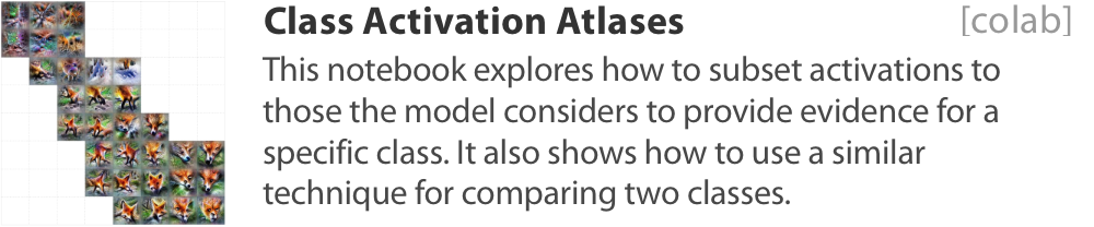 Class activation atlas