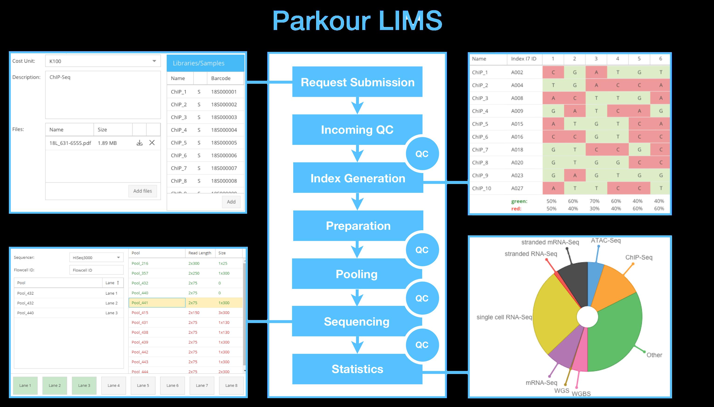 Press about parkour: a selection of sites