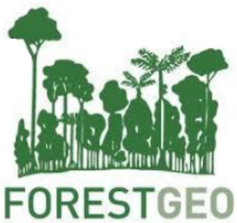 GitHub - forestgeo/ctfs: A version of the original CTFS R